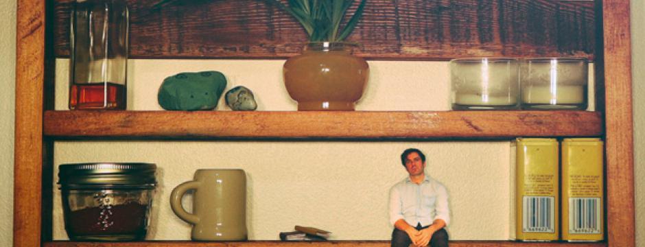 Slow Leaves - Shelf Life Cover