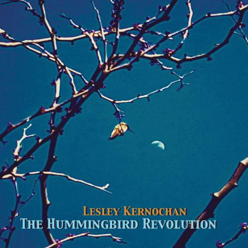 Lesley Kernochan - The Hummingbird Revolution Cover