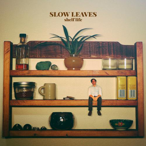 Slow Leaves - Shelf Life Cover